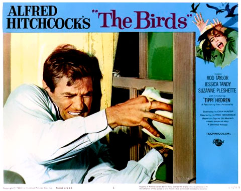 Les oiseaux, le film de 1963