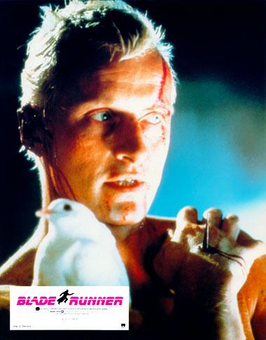 Blade Runner (1982) photo
