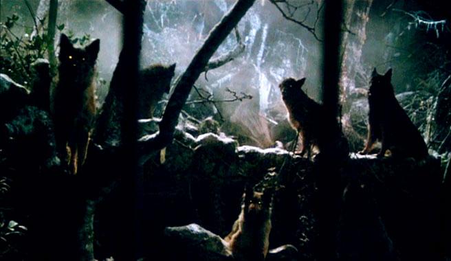 La compagnie des loups, le film de 1984