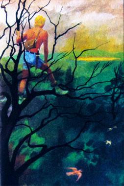 """""""Je vois une tâche jaune..."""" Yvon Le Gall, in La Voûte Invisible (Hachette, 1976)"""