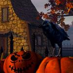 Halloween // Magie